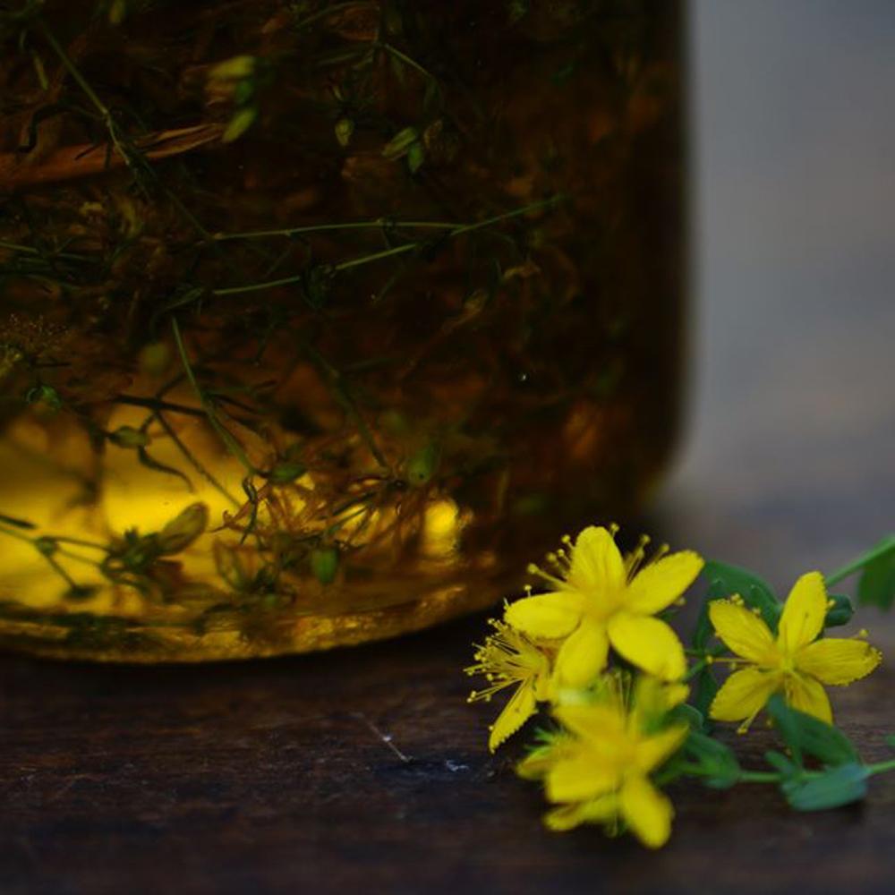 Atelier-La-Cueilleuse-Sauvage_Confectionner-ses-huiles-de-massage-et-baumes-medicinaux